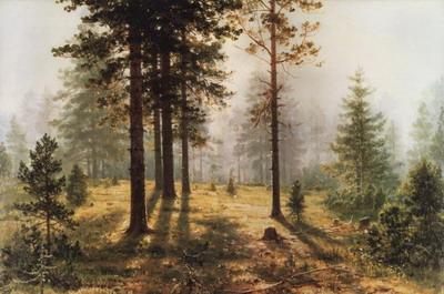 Туман в лесу 1888