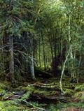 Лесная глушь - 1872 год