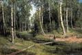 Ручей в березовом лесу - 1883 год