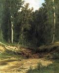 Лесной ручей (Чернолесье) - 1874 год