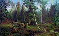 Рубка леса - 1867 год